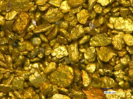 Edergold | Eco Gold